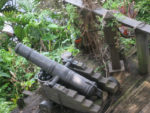 Did This Swiss Family Treehouse Cannon Protect Against Swan Boat Attacks?