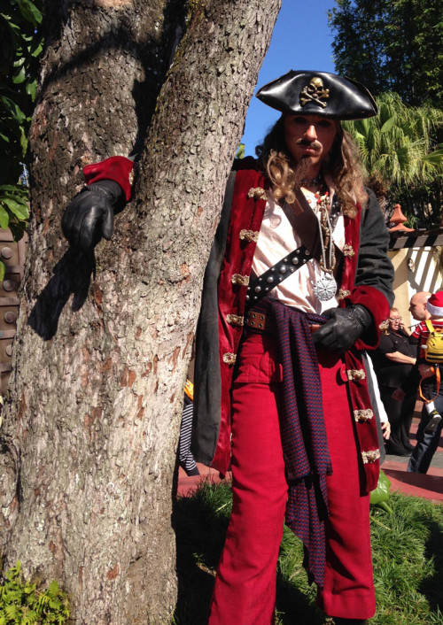 Pirate in a Tree