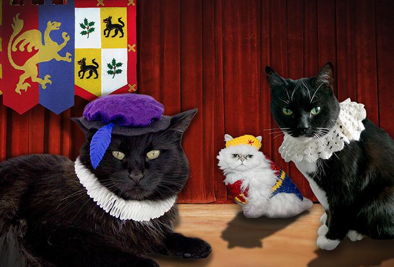 Cats-Shakespear