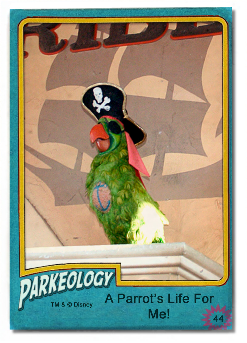 Pirate Parrot 50 greatest Park Characters