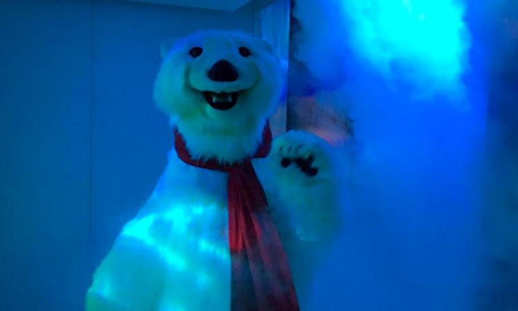 bear_slide