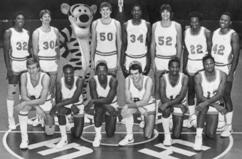 Tigger on the Hundred Acre Wood Basketball Team