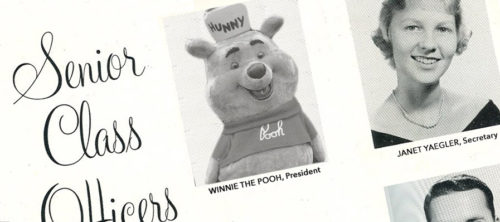 Winnie the Pooh as Hundred Acre Wood Class President