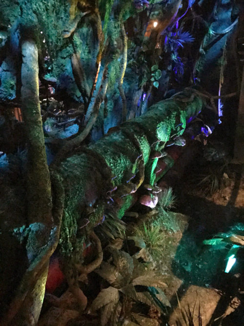 Rusty pipe in the bioluminescent area of the Avatar Flight of Passage queue