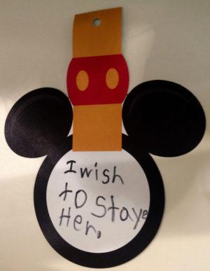 Tokyo DisneySea 15th Anniversary wish