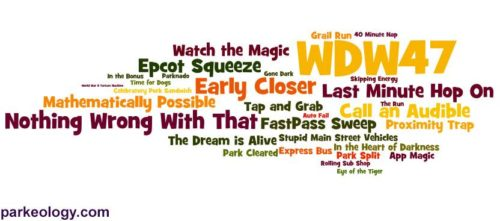 WDW47 word cloud of terminology
