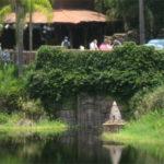 Lost water temple at Disney's Animal Kingdom