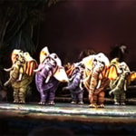 Elephants perform Colonel Hathi's March at Journey Into Jungle Book