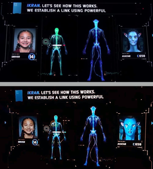 Alternate Na'vi in Avatar Flight of Passage pre-show