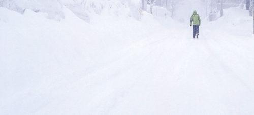 Disney World guest in blizzard
